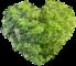 gruenes-herz